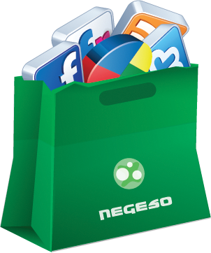 Online Marketing: Web, social media and search engine marketing with Negeso W/CMS